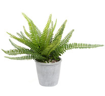 30cm Boston Fern Artificial Plant