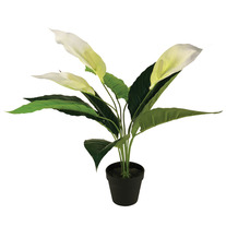55cm Peace Lily Artificial Plant