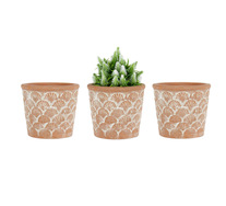 Set Of 3 Scallop Planters