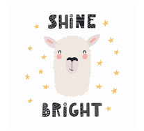 Shine Bright Wall Art